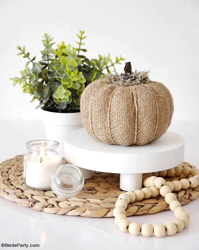 5 Neutral DIY Pumpkin Decorations for Fall - easy craft decorations to  transform cheap pumpkins into high-end looking décor for your home! by BirdsParty.com @BirdsParty #pumpkin #pumpkins #falldecor #fallcrafts #yarnpumpkins #burlappumpkins #lacepumpkins #neutralpumpkins #diycrafts #diyfall #dollartree #dollarstore #farmhousedecor #farmhouse