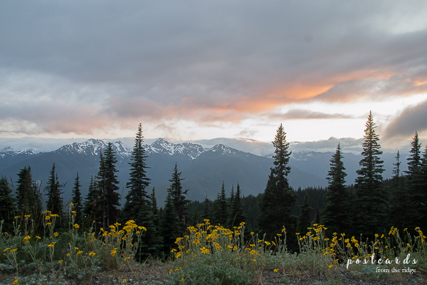 Sunset at Hurricane Ridge, Olympic National Park, Washington