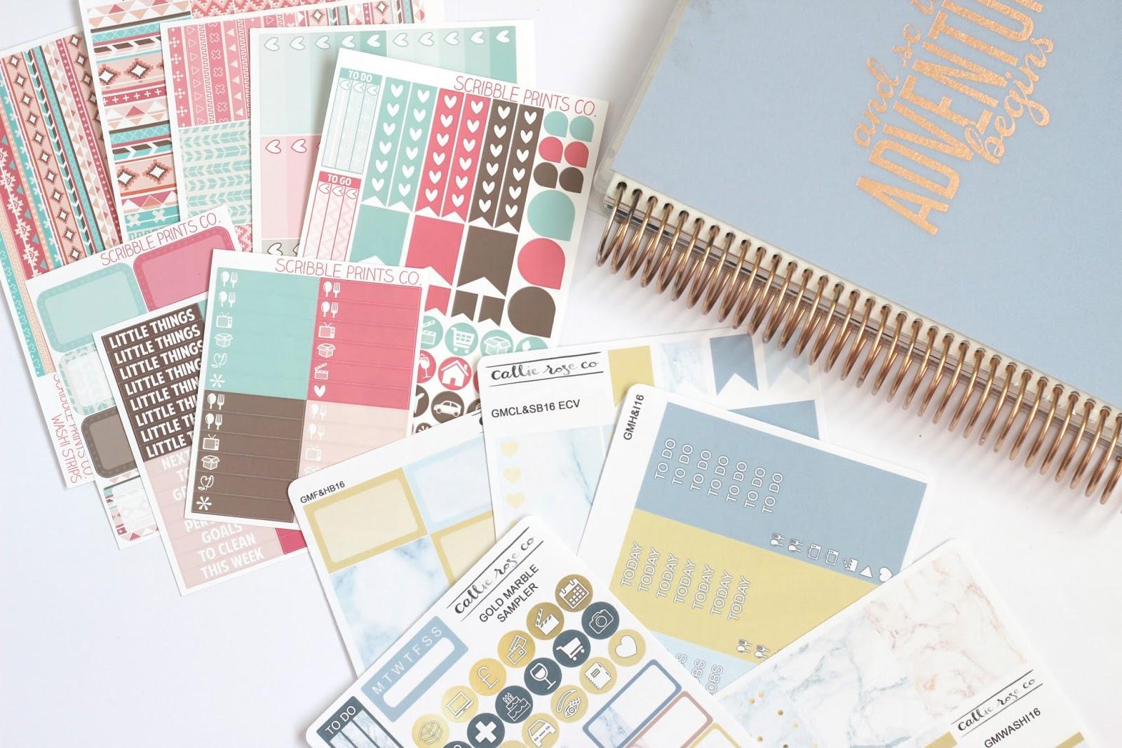 Scribble Prints Co