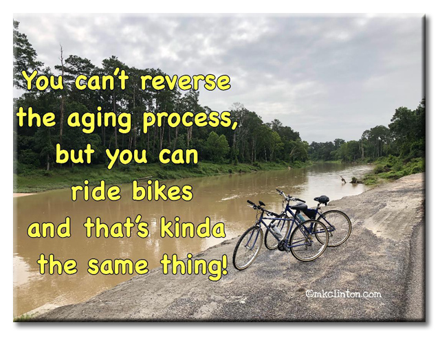 Bicycling quote