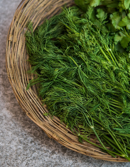 dill leaves or sowa bhaji