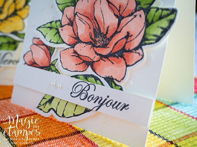 Trio de cartes Stampin' Up! avec le jeu d'étampes Magnolia du matin