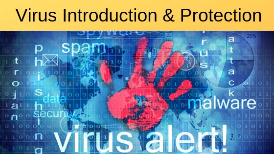 How does a Computer Virus Spread: Computer Virus, Introduction and Protection