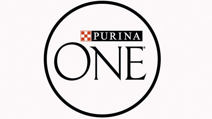purina one dog food reviews
