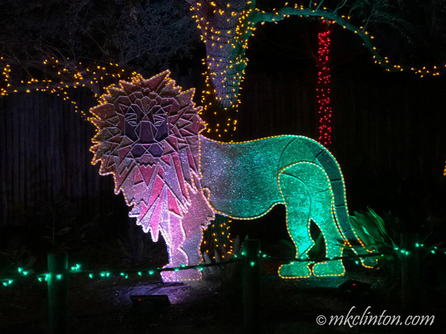 Lion in lights