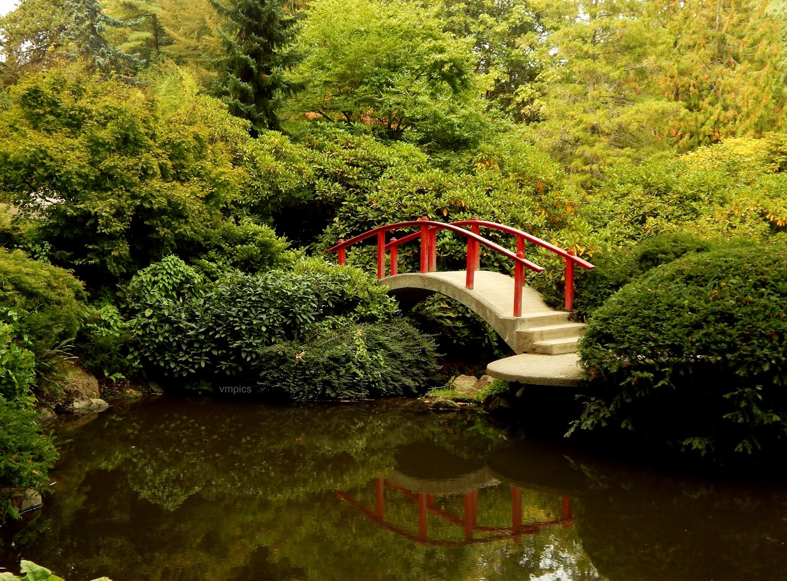 Just words hidden gem of seattle kubota japanese garden the moon bridge do you get why the other bridge is called the heart bridge bridges in japanese gardens symbolize path to paradise biocorpaavc