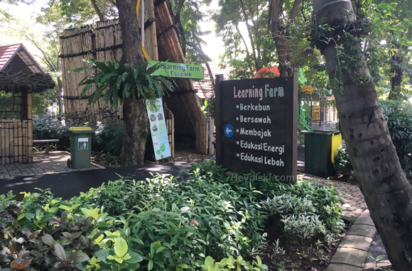 learning-farm-ecopark-ancol