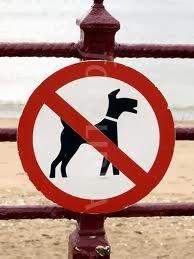 placa proibido cães