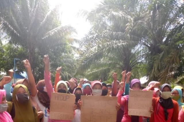 Hari ini, buruh perempuan PT DDP masih tutup jalan perusahaan