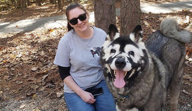 За необычной внешностью улыбчивого паса скрывается жутковатый феномен