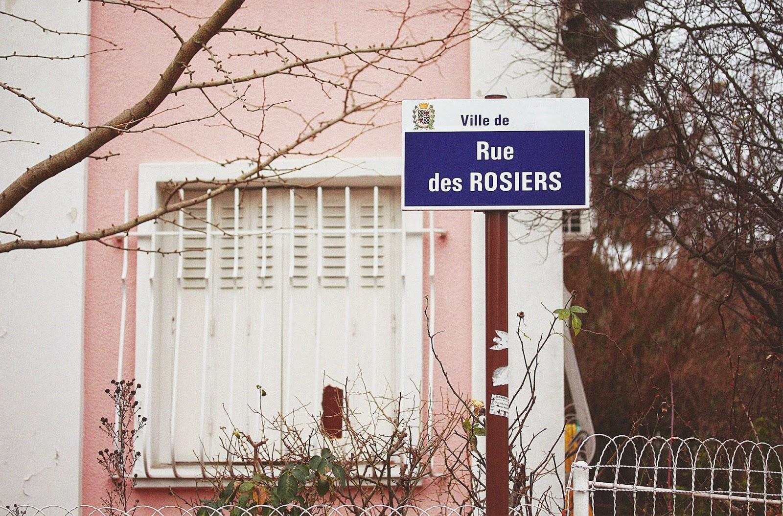 http://rosemademoiselle.blogspot.com/2015/01/la-rue-des-rosiers.html
