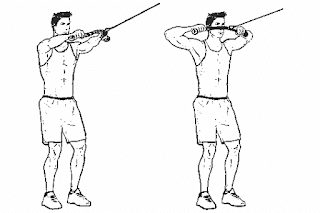 2. Cable Face Pull