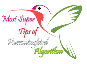 Supper Tips Hummingbird