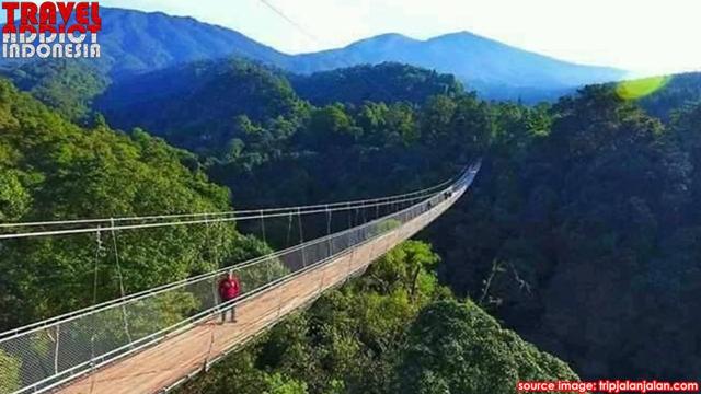 popular tourist lists in Indonesia, Gunung Gede Pangrango National Park Area