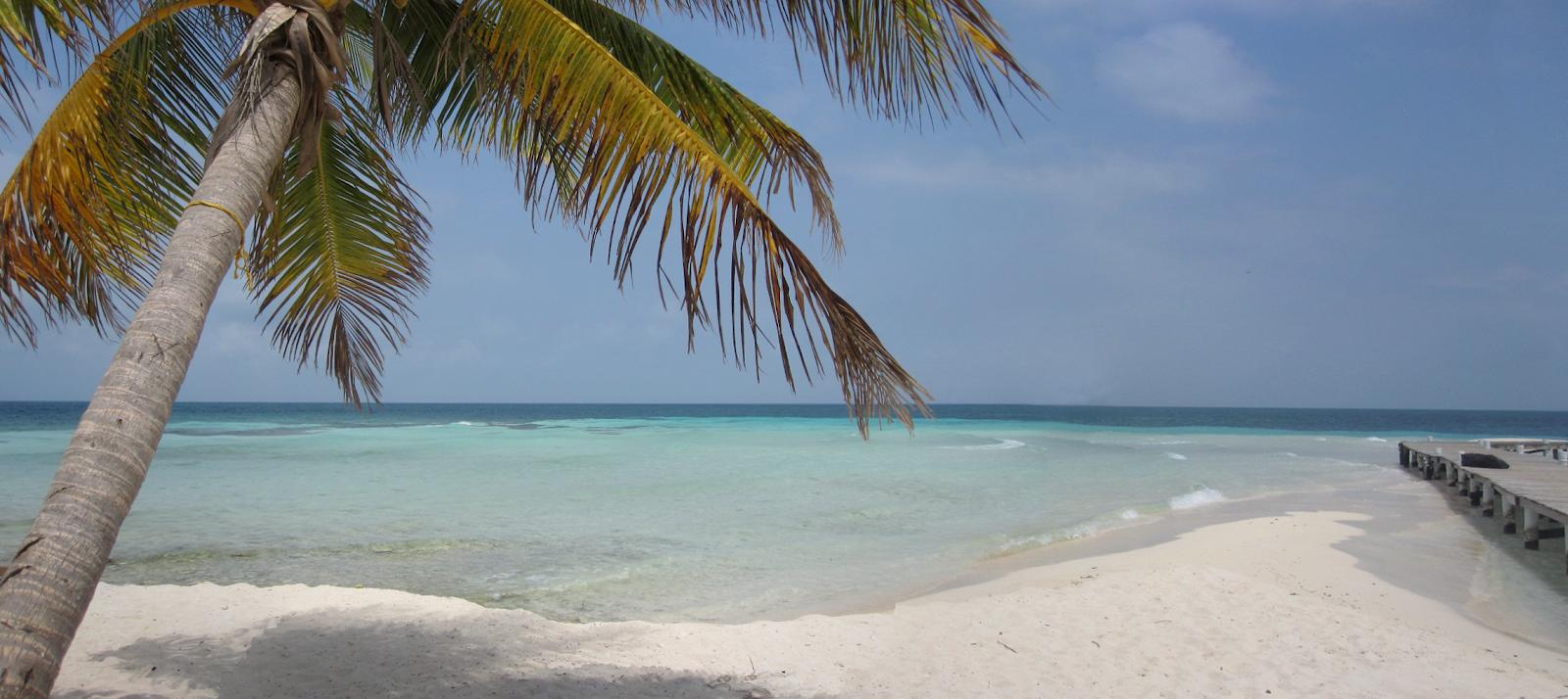 Eclectic a la Mode Belize Caye