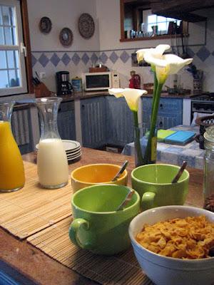 garrrafa com suco de laranja, taças de cereais e vaso de flor numa mesa