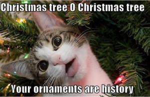 Funny Christmas Memes 2017