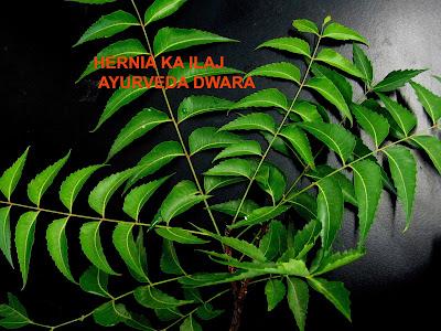 harnia desease treatment
