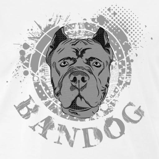 American Bandog Dog Breed