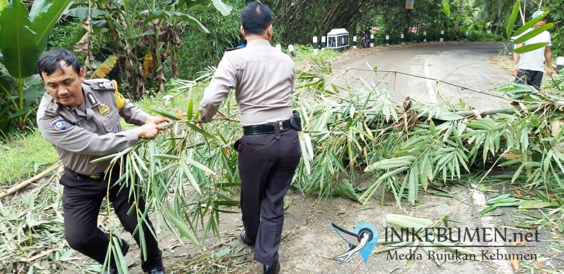 Hujan dan Angin Kencang Robohkan Rumpun Bambu di Padureso