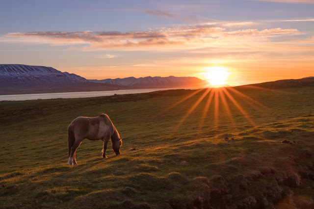 24 hours of daylight! - Midnight Sun in Iceland
