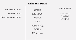What are Database  Exploring Database and DBMS