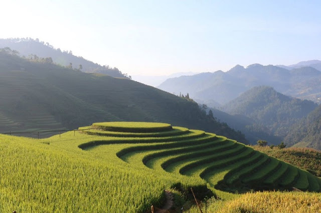 The Rare Advantages Of Mu Cang Chai Attract Tourists In 2020