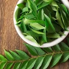 Curry Leaves Health Benefits and Medicinal Uses