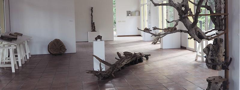 """Exposición de """"La memoria de los árboles"""""""