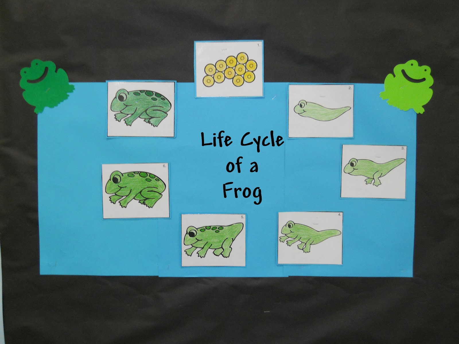 Learning And Teaching With Preschoolers Week Of The Frog