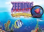 تحميل لعبة السمكة القديمة للكمبيوتر Feeding Frenzy من ميديا فاير