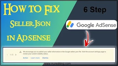 How to fix Google Seller.json File issue in Google Adsense account