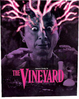 The Limited Edition Slipcover for Vinegar Syndrome's Blu-ray/DVD combo of THE VINEYARD!