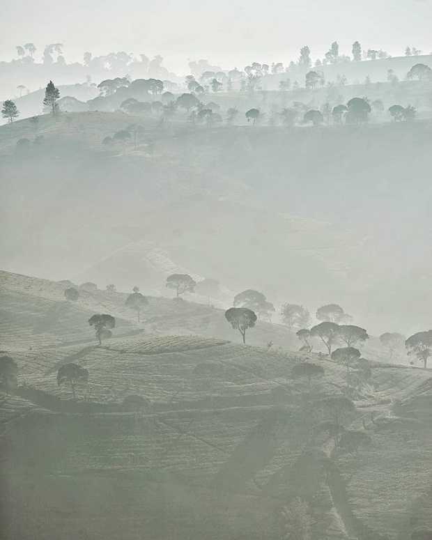 Perkebunan Teh Malabar Pangalengan Mengapa Harus Ke Sini