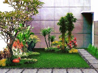 Memilih Tanaman Terbaik untuk Taman kalian