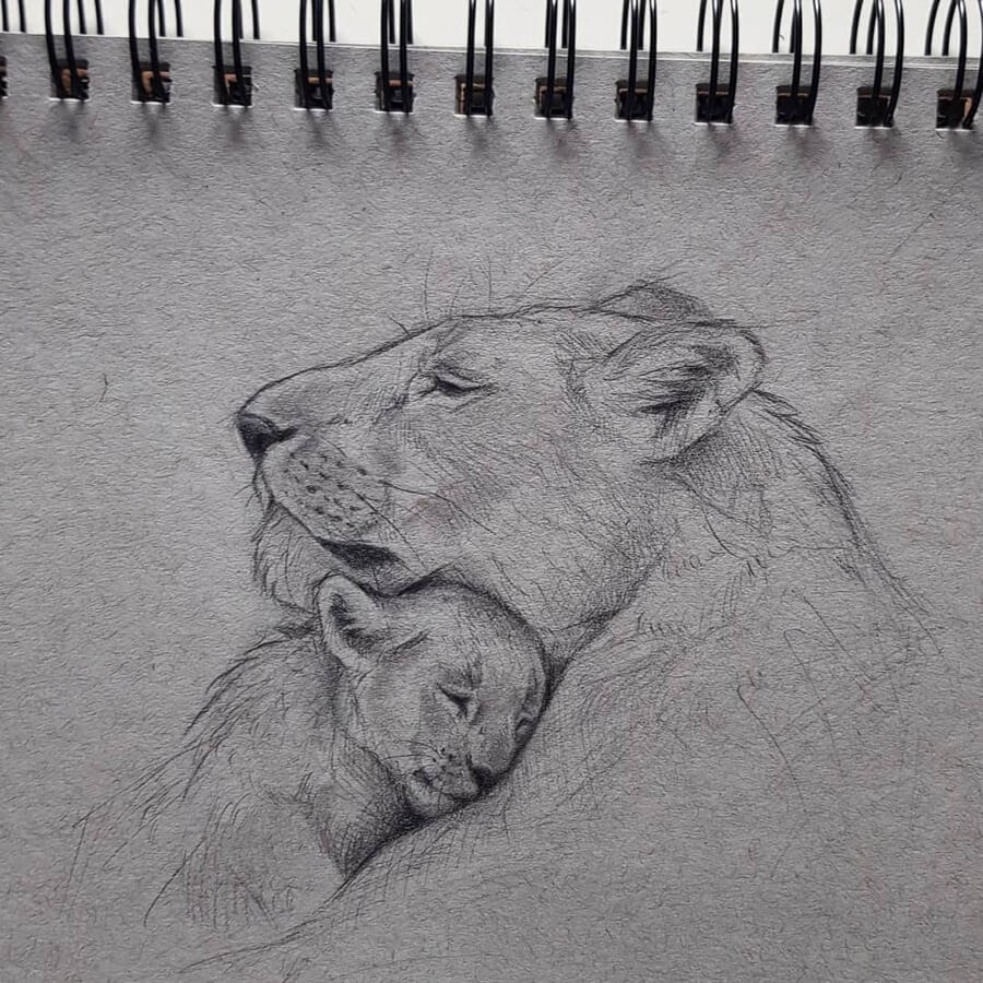 12-Lioness-and-cub-Kleevia-www-designstack-co