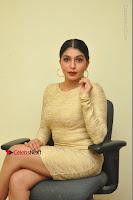 Actress Pooja Roshan Stills in Golden Short Dress at Box Movie Audio Launch  0034.JPG