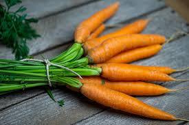 Tanaman Herbal wortel