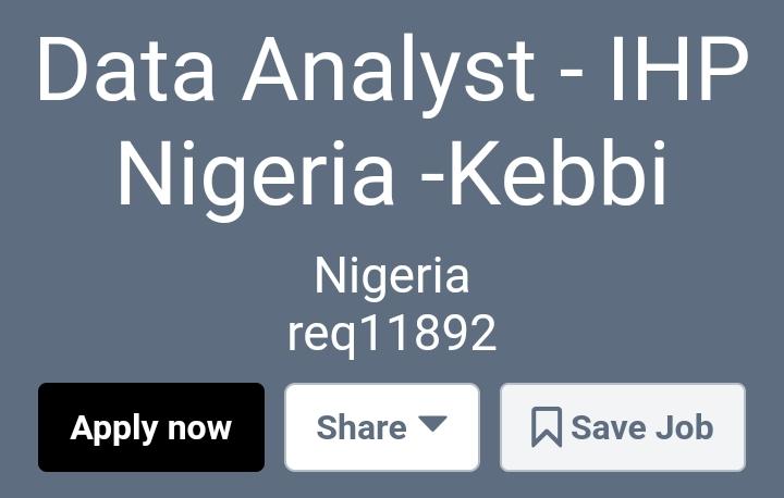Data Analyst - IHP Nigeria -Kebbi - https://palladium.csod.com