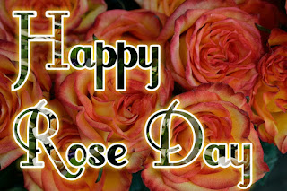 Rose Day Images With Shayari
