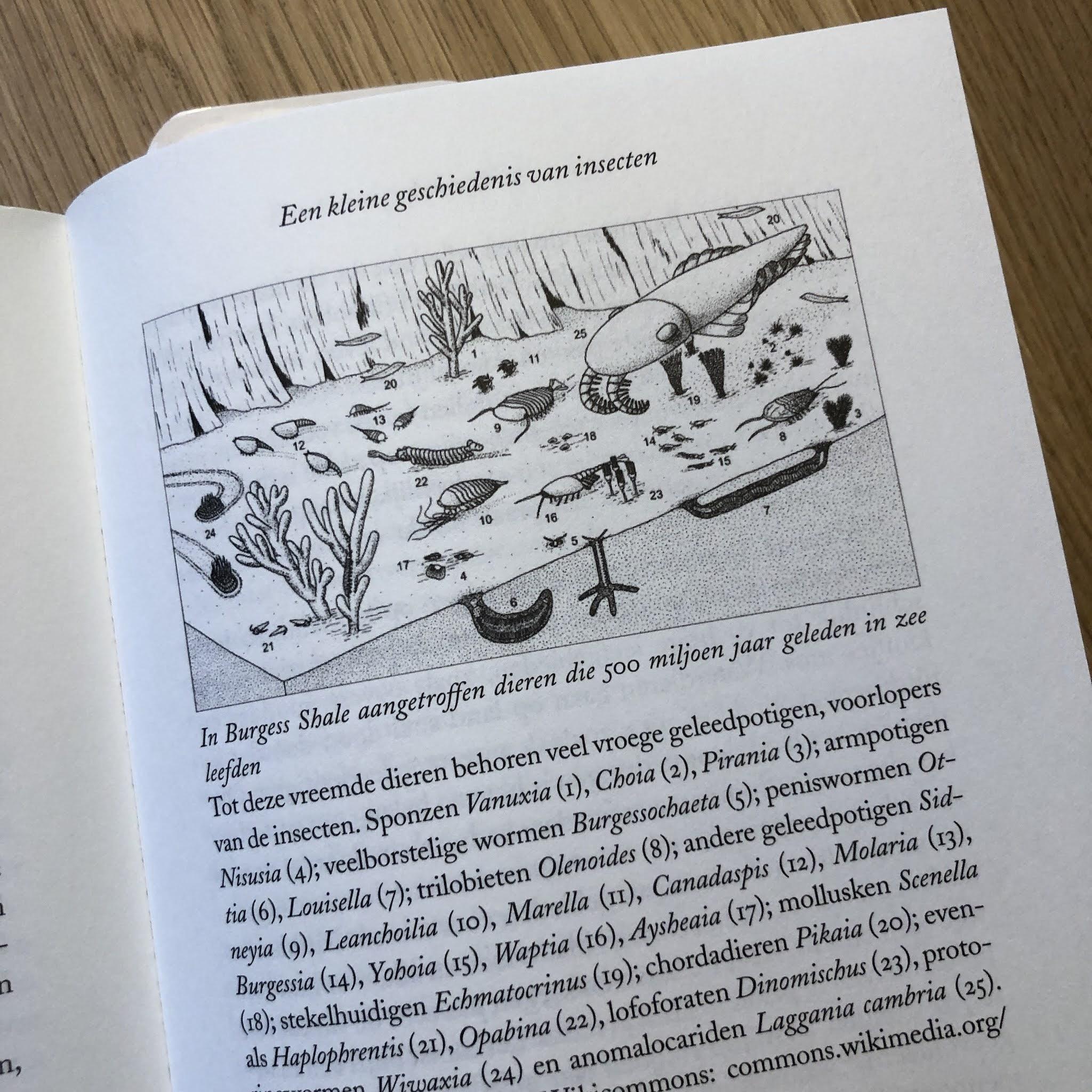 Goulson boek recensie stille aarde