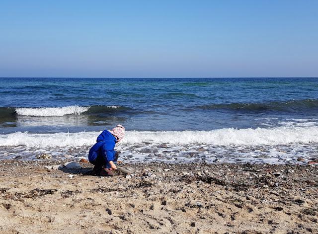 Küsten-Spaziergänge rund um Kiel, Teil 1: Die Steilküste bei Stohl. An den Stränden des Schwedenecks können Kinder super Steine sammeln.