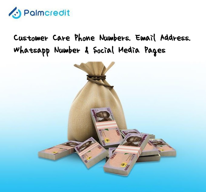 Palmcredit Customer Care Phone Number, Whatsapp Number, Email Address, Facebook, Instagram, and Twitter Page