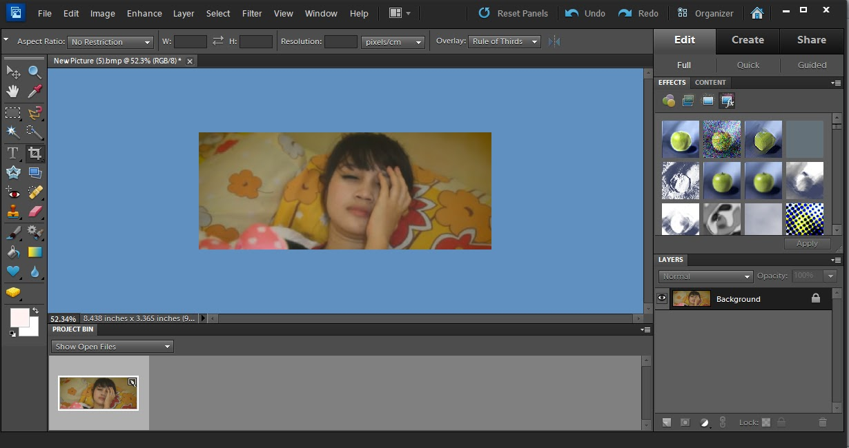Blog And Life Serial Number For Adobe Photoshop Elements 10 0