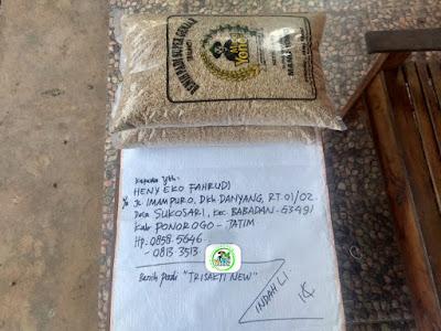 Benih pesanan HENY EF. Ponorogo, Jatim.   (Sebelum Packing)