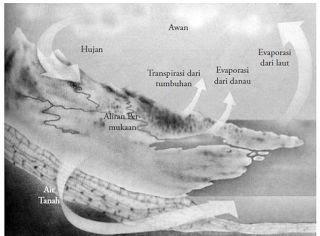 Pengertian dan Penjelasan tentang Perairan Darat
