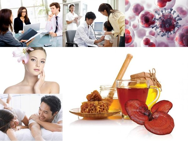 Sử dụng nấm linh chi hữu ích cho sức khỏe con người