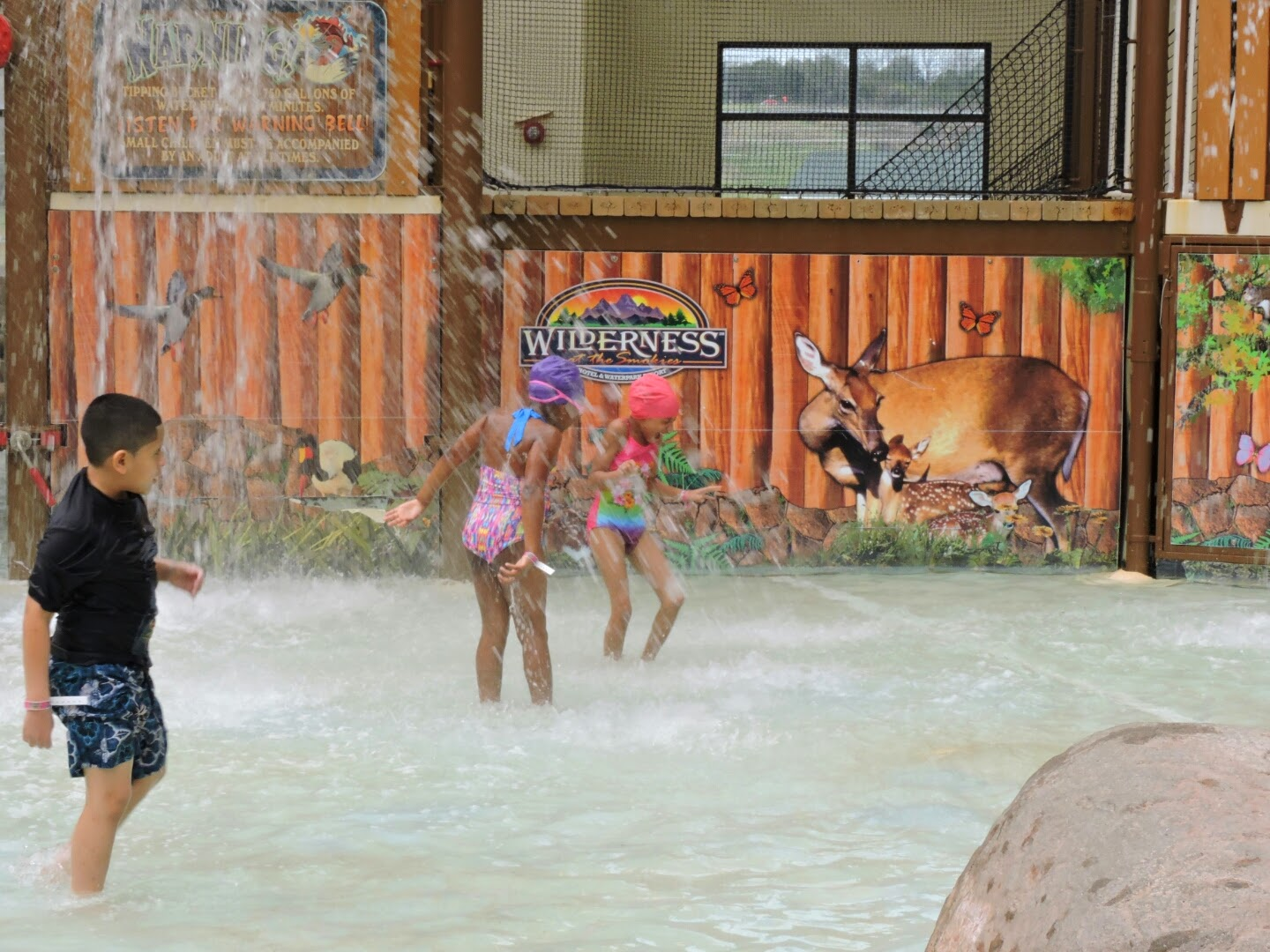 Spring Break at the Smoky Mountains Tennessee  (Wilderness at the Smokies indoor pool)  via www.productreviewmom.com