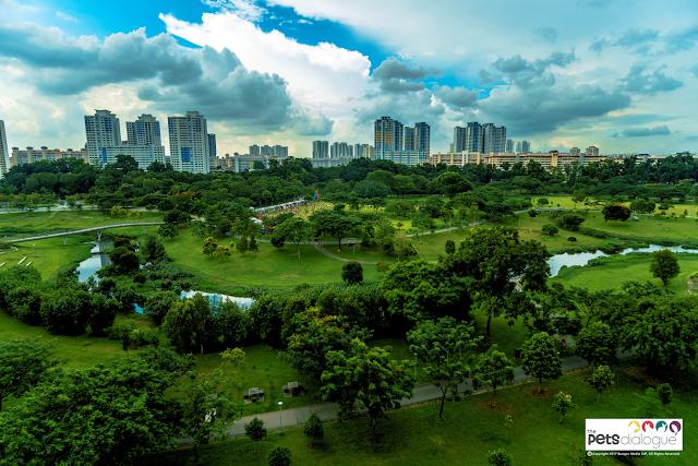 Bishan Park Pet event singapore