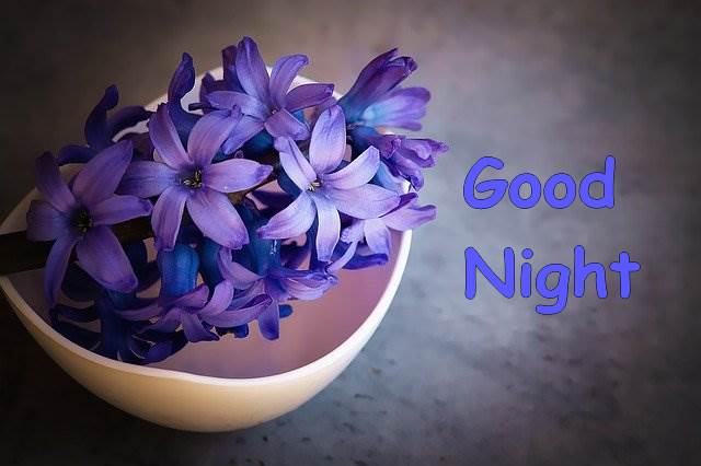 good-night-purple-vase-flower-images-hd